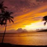 hawaiitb